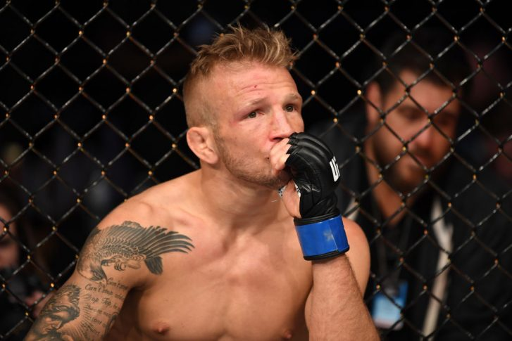 UFCファイトナイト・ブルックリン:ヘンリー・セフード vs. T.J.ディラショー【アメリカ・ニューヨーク州ブルックリン/2019年1月19日(Photo by Josh Hedges/Zuffa LLC/Zuffa LLC via Getty Images)】