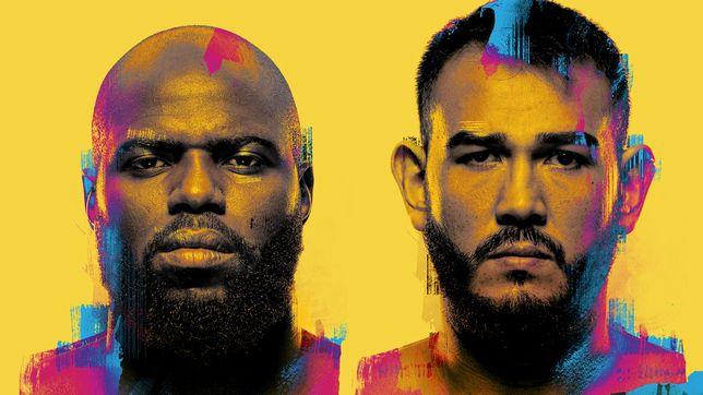 UFCファイトナイト・ラスベガス28:ホーゼンストライク vs. サカイ